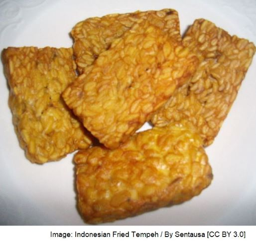 Indonesian Fried Tempeh - meat analogue
