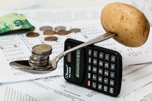 Vegan Meal Budgeting