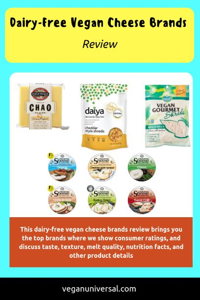 Dairy-Free Vegan Cheese Brands Review