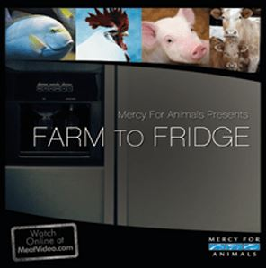 Vegan Animal Rights Documentaries - Farm To Fridge (2011)