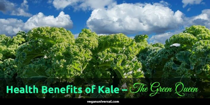 Health Benefits of Kale & Nutrition Facts
