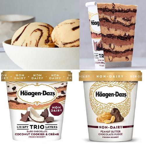 Häagen-DazsDairy-Free Ice Cream Review