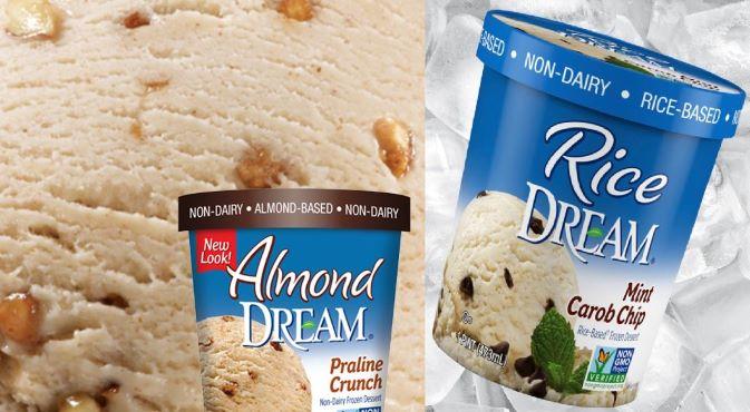 Dream Vegan Ice Cream Review