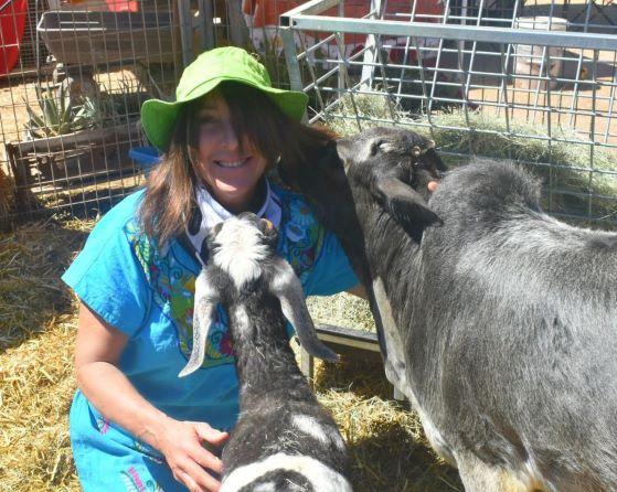 Aimee's Farm Animal Sanctuary – Gilbert, Arizona