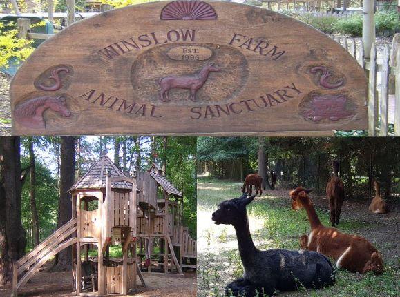Winslow Farm Animal Sanctuary – Norton, Massachusetts